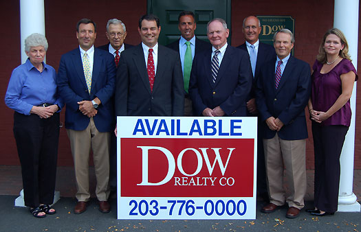 dow realty team
